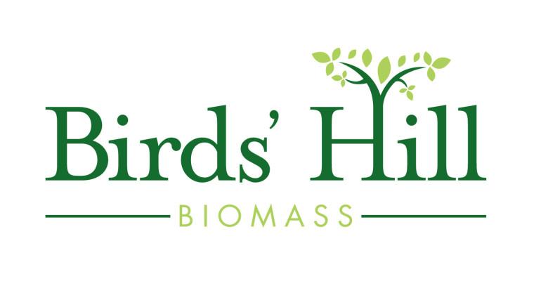 logo branding brand identity biomass green energy graphic design