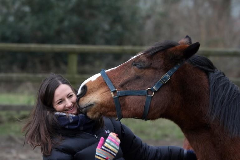 Horse assisted coaching, horse coaching